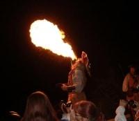 iannitti2007tedfire2
